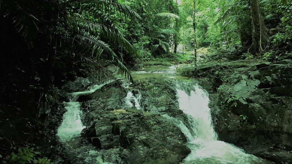 Khao Phanombencha National Park Krabi ao nang