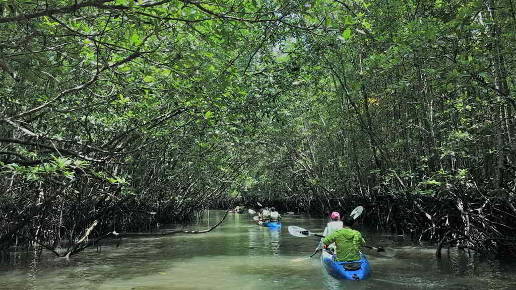 by motorbike to Thalane bay kayaking thailand