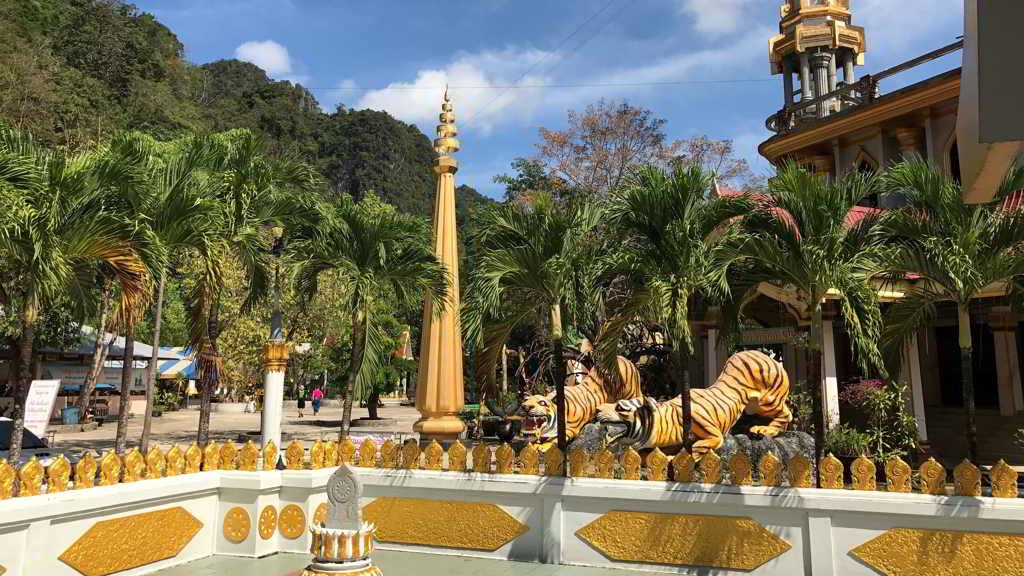 tiger temple by motorbike rent krabi