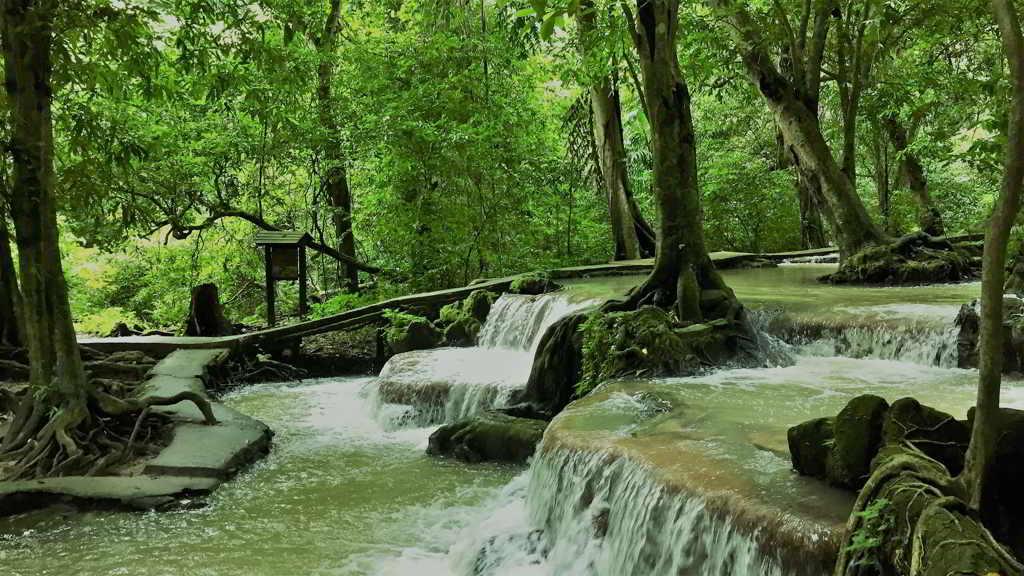 Than Bok Khorani National Park Than-Bok-Khorani-National-Park-Krabi-by-bike-rental-ao-nang