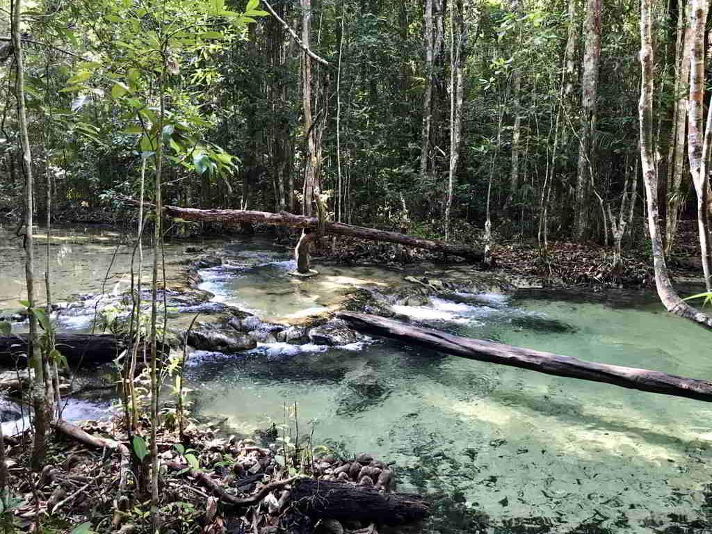 Emerald pool krabi ao nang thailand